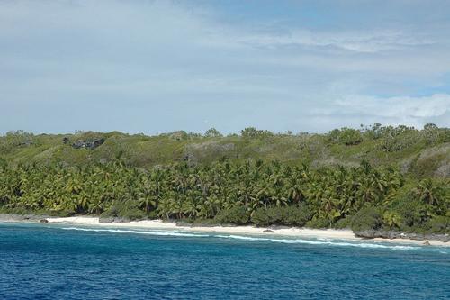 Trên trang web của UNESCO, 10 cây và bốn loài chim đất đặc hữu cho hòn đảo này.