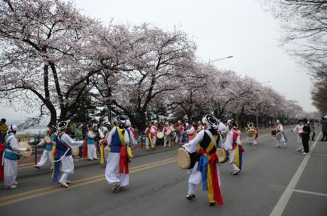 Du khách có thểhòa mình vào vô số các hoạt động văn hóa, nghệ thuật đường phố, triển lãm ảnh, trang trí hoa hay các buổi trình diễn âm nhạc được tổ chức liên tục trong suốt thời gian diễn ra lễ hội.