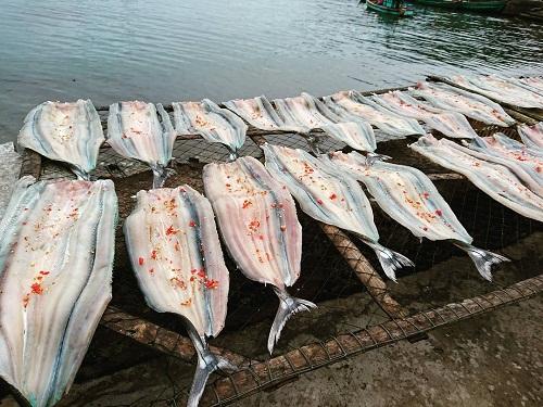 Cá xanh xương Cá xanh xương là một đặc sản của quần đảo Nam Du. Gọi là xanh xương vì khi nấu chín xương cá có màu xanh ngọc. Thân cá dài và tròn, mỏ nhọn như cá kìm. Cá được chế biến thành nhiều món như tái chanh, nấu với bắp chuối... nên thực khách có thể thoải mái lựa chọn phù hợp sở thích. Nhưng cách làm phổ biến và nổi tiếng nhất là nướng. Để nướng cá ngon, người ta sẽ bọc cá trong bẹ chuối, quấn dây kỹ rồi đem nướng trên củi. Khi mùi thơm bốc lên đậm, bẹ chuối chuyển màu là lúc cá chín tới. Thịt cá xương xanh ngọt và chắc, ăn kèm rau rừng như lá cách, lá đinh lăng rất hấp dẫn. Ảnh: Thanh Tuyền.
