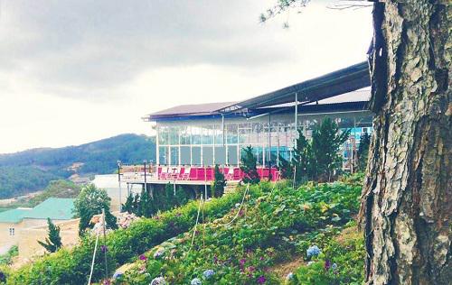 Nhà hàng còn có một vườn hoa khoe sắc cho thực khách selfie, check-in sống ảo.