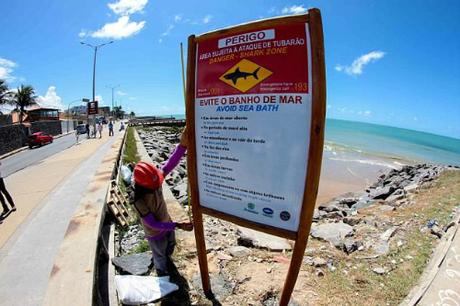 Vùng biểnPiedade nơi Melo bơi ngày hôm ấy vốn được gắn tới 110 biển cảnh báo cá mập, thường là cá mập hổ hoặc cá mập bò. Ảnh:Marlon Costa/Pernambuco Press.