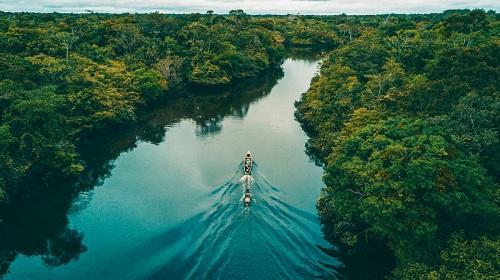 Không có con đường nào bắc ngang Amazon, lưu vực của nó lớn đến mức gần như chia Nam Mỹ làm đôi. Ảnh:Pinterest.
