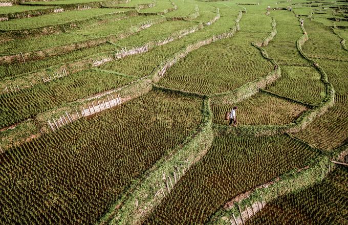 Nhiếp ảnh gia Mỹ: 'Cuộc đời tôi sang trang sau chuyến đi Việt Nam'