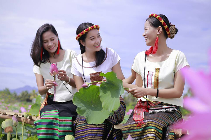 Cánh đồng sen 5 ha nở rộ giữa nắng hạn Ninh Thuận