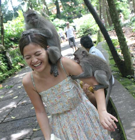 Chơi đùa với khỉ là trải nghiệm yêu thích của du khách đến Bali, Indonesia, nhưng cũng có nhiều trường hợp bị loài vật này tấn công. Ảnh:Pinterest.