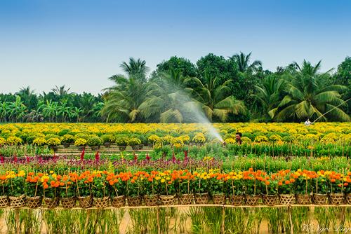 Nhằm quảng bá, giới thiệu và kết nối thương mại cho các sản phẩm đặc trưng, làng nghề truyền thống, sản phẩm khởi nghiệp của tỉnh Đồng Tháp tại TP. Hồ Chí Minh, Uỷ ban Nhân dân tỉnh Đồng Tháp phối hợp với Công ty Cổ phần Quản lý và Phát triển Bất động sản Dấu ấn Việt Nam (Vietnam Signature) tổ chức chương trình trưng bày, giới thiệu sản phẩm đặc trưng tỉnh Đồng Tháp tại Trung tâm thương mại The Garden Mall (Quận 5), từ ngày 27/4/2018 đến ngày 29/4/2018, với nhiều hoạt động giao lưu, xúc tiến thương mại, biểu diễn nghệ thuật đặc sắc.