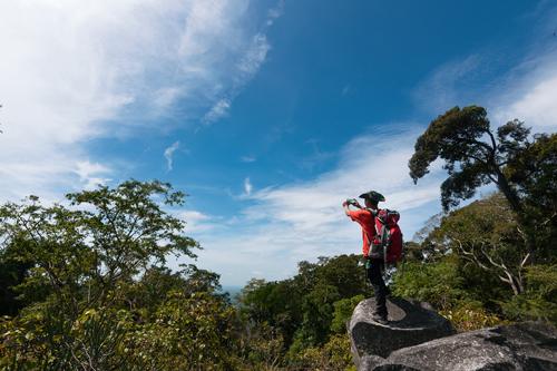 Trong năm 2017, TTC World  Tà Cú đưa vào hoạt động dịch vụ tour leo núi khám phá rừng nguyên sinh với đội ngũ hướng dẫn viên chuyên nghiệp cùng trang bị công cụ dụng cụ leo núi đạt chuẩn. Quý khách tham gia tour leo núi cùng chinh phục thử thách, khám phá nét đẹp nguyên sơ, hùng vĩ của núi rừng và tìm hiểu về đa dạng và phong phú hoạt động của hệ sinh thái các loại thực vật, động vật trong Khu bảo tồn thiên nhiên Núi Tà Cú. Tận hưởng cảm giác chiến thắng khi chinh phục được đỉnh Nọc Trù cao nhất của ngon núi Tà Cú với độ cao 694m so với mặt nước biển.