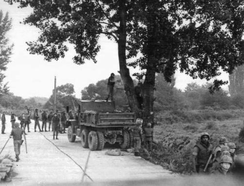 Binh lính Mỹ đang đốn hạ cây dương trong chiến dịchPaul Bunyan. Ảnh: Timeline.