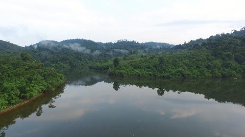 Bên trong khu nghỉ dưỡng nằm giữa núi rừng sát Sài Gòn - ảnh 1