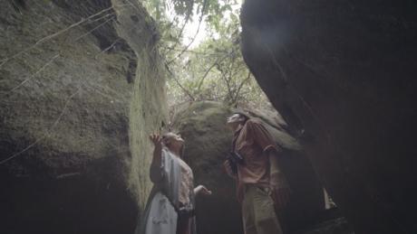 Với khí hậu mát mẻvà khu vực rừng nguyên sinh rộng lớn, khu nghỉ dưỡng đem đến cơ hội để du kháchhòa mình cùng thiên nhiên, khám phá sự đa dạng sinh học và địa hình.Lang thang dưới những cánh rừng già, đi bộ trên không với những cây cầu dây văng rợp bóng cây... sẽ tạo cảm giácmới mẻ.