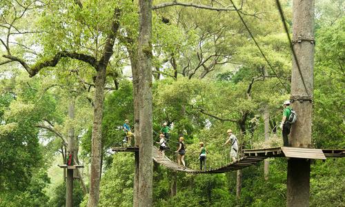 Điều cần biết cho người du lịch tự túc Chiang Mai