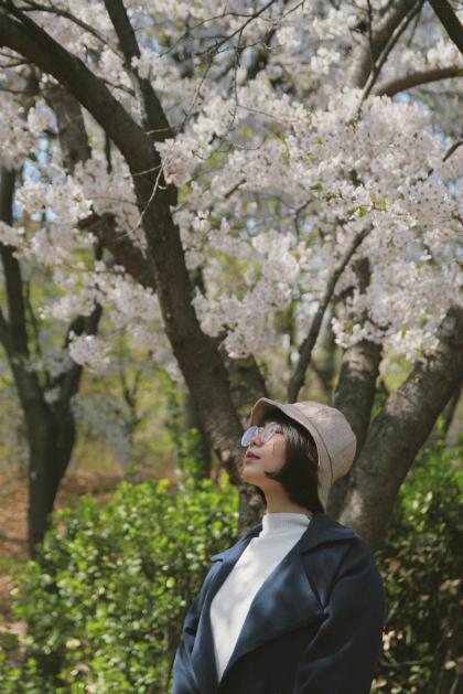 Linh chậm rãi ngắm hoa anh đào mà không còn lo đi chỉ cho đủ điểm check-in. Ảnh: NVCC.