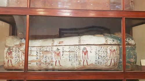 Xác ướp đặt trong quan tài trưng bày ở bảo tàng Ai Câp. Ảnh: NVCC