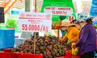 Lễ hội trái cây ở Sài Gòn không thu phí trẻ em ngày 1/6