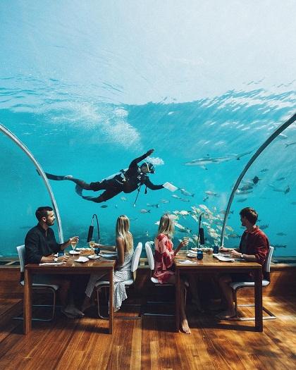 Ellie cũng dùng bữa tại nhà hàng dưới biển Ithaa trong khu resort Conrad Maldives. Một bữa ăn có giá tới hàng nghìn USD.
