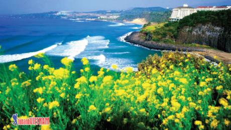 Mùa hè lãng mạn tại Hàn Quốc.