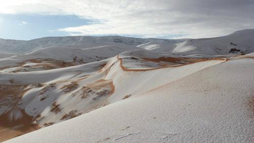 Tuyết từng phủ kín sa mạc Sahara dưới sự ngỡ ngàng của nhiều người. Ảnh:Grunge.