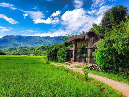 Cả khu nghỉ được ví là ngôi làng cổ còn xót lại tại Việt Nam. Trước cửa là con đường mòn quanh co và cánh đồng lúa đổi màu theo mùa.