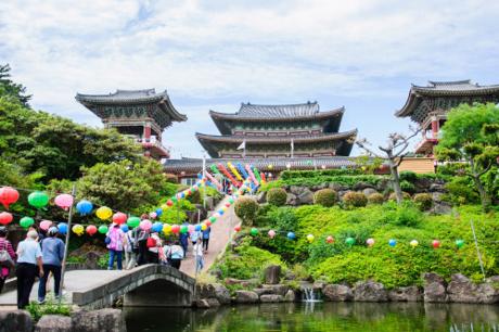 Hay du khách sẽcó dịp khám phá làng dân tộc Seongeup, nơi tái hiện cuộc sống của người nông dân trên đảo Jeju một cách chân thật, sinh động từ thế kỷ 19. Và ngôi chùa cổ Yakcheonsa lâu đời nhất đảo Jeju là một điểm đến không thể bỏ lỡ, nơi thích hợp cho những ai muốn tìm đến không gian thanh tịnh.Ngoài các điểm đến quen thuộc, những năm trở lại đây, Jeju còn được biết đến với Bảo tàng Trà Osulloc nằm cạnh Rừng trà Seogwang của Osulloc. Du khách đừng quên tận hưởng hương vị thơm ngon, thuần khiết của các loại trà hảo hạng.