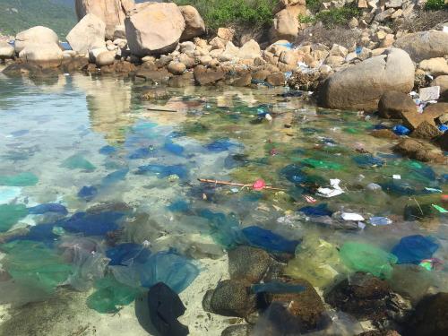 Túi nilong trôi lềnh bềnh trên mặt biển. Ảnh: Trần Thu Trang.