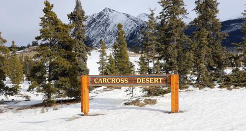 Không chỉ bởi nó nằm ở Canada, một đất nước của lạnh giá, mà còn bởi diện tích tí hon chỉ 2,59 km2. Anhr: BBC.