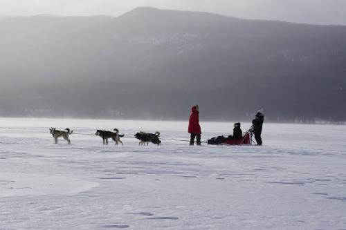 Vào thời điểm khi tuyết phủ hoàn toàn, sa mạc lại trở thành thiên đường cho các du khách đến trượt tuyết. Ảnh: Terre Boréale.