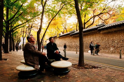 Quanh con đường này cũng có rất nhiều công trình kiến trúc thú vị. Công trình được nhiều du khách và bạn trẻ yêu thích nhất là cung Deoksu (tiếng Hán có nghĩa là cung Đức Thọ), có vé vào cửa chỉ 1,000 won. Được xây dựng hồi đầu thếkỉ15, Deoksu là một trong năm cung điện hoàng gia được bảo tồn đến hiện tại của thành phố Seoul.Trong khuôn viên hoàng cung hàng ngày vào ba buổi sang, trưa, chiều đều có màn tái dựng lại nghi lễ đổi ca trực của các lính canh thời Choseon, mỗi đợt biểu diễn kéo dài khoảng 10 phút.