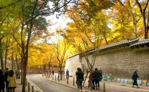 Ngoài cảnh vật thiên nhiên, xen kẽ hai bên đường còn có khá nhiều các tượng điêu khắc đa dạng và vui mắt, những quầy hàng quà vặt, đồ lưu niệm, ghế đá& cho khách dừng chân nghỉ ngơi, chiêm ngưỡng hay chụp ảnh. Con đường lát đá này là một trong những biểu tượng của thành phố Seoul, đã từng là nơi quay hình của bộ phim truyền hình Goblin, cũng như là một địa điểm trong video quảng bá Seoul của nhóm Super Junior và SNSD năm 2010.