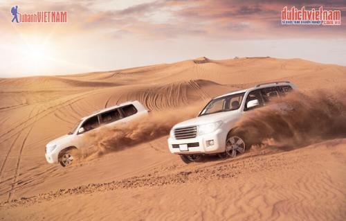 Khám phá sa mạc Safari trên xe Land Cruiser.