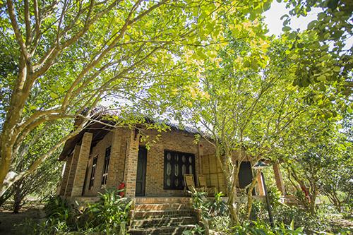 Huế - thành phố nơi du lịch tham quanVới vị trí nằm ở duyên hải miền trung Việt Nam, Huế có khí hậu và phong cảnh làm say lòng những ai yêu thiên nhiên, đặc biệt, từ tháng 3 đến tháng 9 là thời điểm đẹp nhất trong năm, khi những cánh hoa thanh trà chuyển mình thành quả nặng trĩu cả khu vườn.