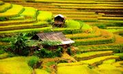 Tôi có nên đi Hà Giang vào tháng 9?