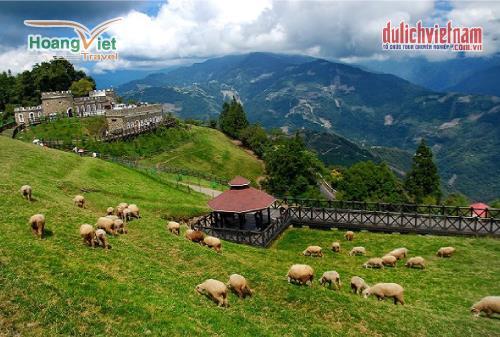 Nông trường Thanh Cảnh - Tiểu Thụy Sĩ của Đài Loan.