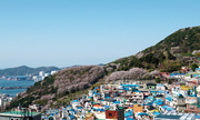Một vòng dạo chơi 'Santorini của phương Đông' ở Hàn Quốc