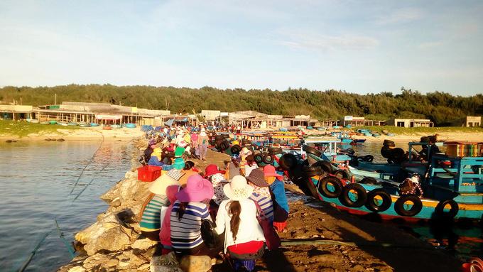 Buổi sáng nhộn nhịp đón thuyền cá về bờ ở Cù Lao Thu