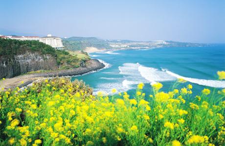 Giảm giá Sốc Seoul  Nami  Everland 5 ngày - 1
