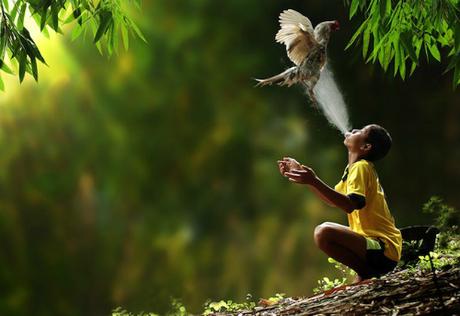 Theo Bảo tồn quốc tế, chỉ có 17 quốc gia được coi là megadiverse (quốc gia siêu đa dạng, phần lớn các loài vật trên thế giới đều sống ở đây. Thậm chí ở Indonesia, người ta còn tìm thấy những loài không tồn tại ở đâu khác). Ảnh: Drama Fever.