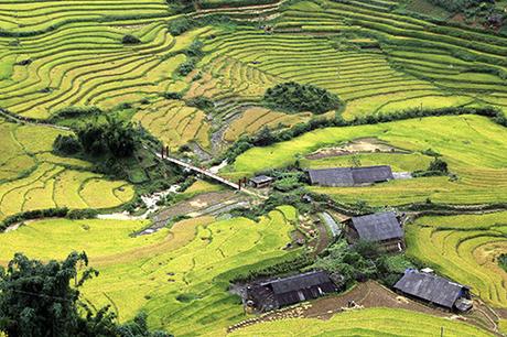 Tháng 9 cũng là khi lúa vào vụ, khiến cả thung lũng chuyển màu vàng óng.