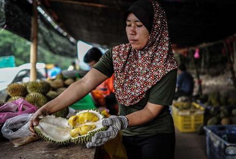 Nếu bạn đã thử một loại sầu riêng mà không thích, điều đó không có nghĩa là bạn sẽ không thích sầu riêng, Gasiknói. Bạn chỉ không thích loại đó mà thôi. Ảnh: CNN.