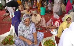 Bếp ăn khổng lồ nấu 40.000 suất miễn phí một ngày ở Ấn Độ