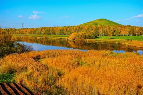 Hokkaido vào mùa thu. Ảnh: Nick M.