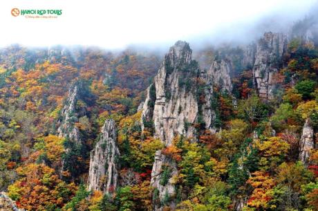 Mùa lá vàng lá đỏ ở Hàn Quốc.