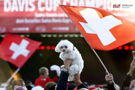 Những người yêu động vật tại Thụy Sĩ phản đối tiêu thụ thịt chó mèo. Ảnh:Denis Balibouse.