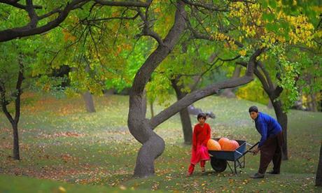 Không khí nơi bộ tộc Hunza sinh sống rất trong lành. Ảnh: Shughal.