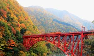 10 điểm ngắm lá đỏ đẹp nhất Nhật Bản năm 2018