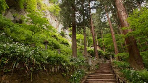 Tôi kiểm tra bản đồ để mong tìm con đường gần hơn vào khuôn viên ngôi đền, cố gắng tìm lối vào bằng dây cáp. Một hành động dường như vô ích, không có dây leo núi. Đền Yamadera Risshakuji, nằm trên núi Hoju thuộc quận Yamagata của Nhật Bản, và không có lối đi tắt cho khách du lịch, Karla viết.