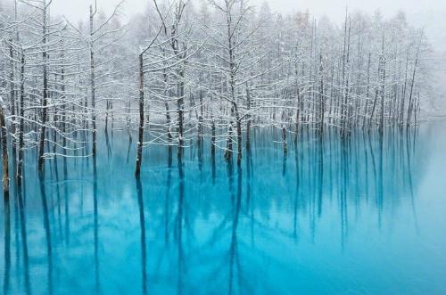 Hồ Xanh khi vào đông. Ảnh: Raredelights.