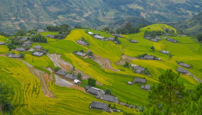 Ruộng bậc thang đẹp bậc nhất Việt Nam ở Hoàng Su Phì