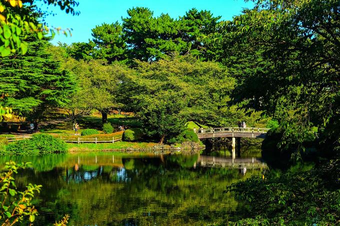 Khu vườn giữa Tokyo được đổi tên sau khi lên phim hoạt hình