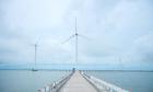 Cánh đồng điện gió lớn nhất Việt Nam đẹp như châu Âu