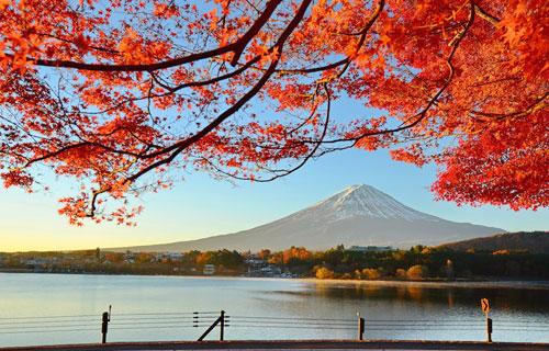 Vẻ đẹp núi Phú Sĩ khi mùa thu đến